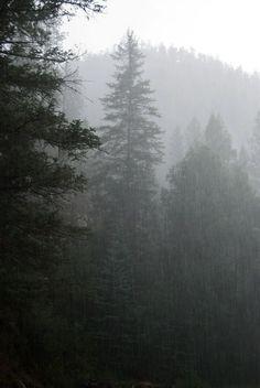 (disambiguation) Rain is a type of precipitation in which liquid drops of water fall toward the surface of the earth. Rain, The Rain, or RAIN may also refer to: I Love Rain, No Rain, Rain Storm, Rainy Mood, Rainy Days, Rainy Night, Fuerza Natural, When It Rains, All Nature