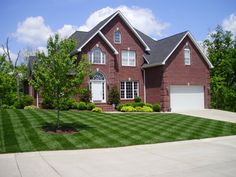 NICE YARD | Guide to Maintaining Your Lawn