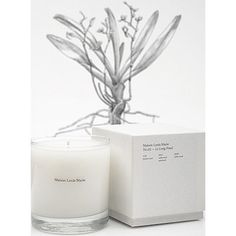 """Maison Louis Marie's No. 2 candle is named after the Belgian nursery founded by the owner's grandfather. The scent is blended into soy wax and has a top note of hinoki wood, mid notes of cedar and patchouli, with a white musk base note. The 8.5 oz. candle has a burn time or 60 hours. 3.5"""" tall, 3"""" wide."""