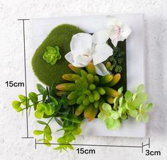 NEW Metope succulent plants plastic photo frame wall decoration artificial silk rose flowers home decor living Room-in Artificial & Dried Flowers from Home & Garden on Aliexpress.com | Alibaba Group