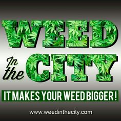 Weed in the city is also on Instagram. Follow us for more marijuana stuff !