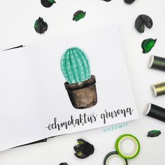 🌵 I used Gansai Tambi watercolors tombow fudenosuke Sketchbook is from . Watercolors, Watercolor Paintings, Tombow Fudenosuke, 100 Day Challenge, Brush Lettering, 100th Day, Modern Calligraphy, Brushes, Place Card Holders