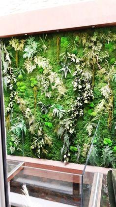 Jardin vertical con planta preservada en lucernario