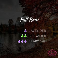 These Essential Oil Diffuser Blends for Fall will bring the smell of falling leaves into your home and boost your immune system to keep you healthy! #diffuserblend #essentialoils #fall #autumn #essentialoilblend #fallrain