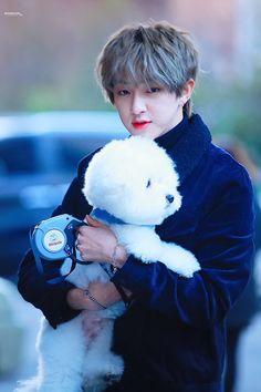 (17) Twitter Golden Child, Golden Dog, Li Hong Yi, Dogs And Kids, Woollim Entertainment, Kpop Guys, Jaehyun, Entertaining, Children