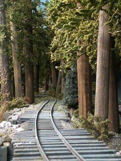 Trains will snake through the woods Ho Trains, Model Trains, Ho Train Layouts, Garden Railroad, Railroad Pictures, Train Art, Rail Car, Tiny World, Chugs