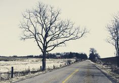 Spring Country Road Digital Photo https://etsy.me/2GmXSk9 #art #photography #gray #beige #interiordesign #road #country #tree #trees #etsyshop #etsy #etsyliving #etsyseller #picoftheday #pic #Friday #décor #shop #design #vintage