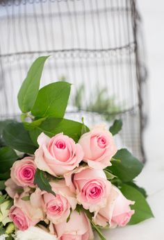 pale pink roses....