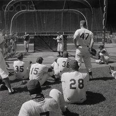 Casey Stengel coaching team at batting practice, September 11, 1962.