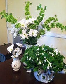 Happy St.Patrick's Day!  Bells of Ireland mixed with white daisies and a shamrock plant.