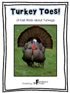 Fact book about turkeys. Great for Thanksgiving! Thanksgiving Facts, November Thanksgiving, Thanksgiving Preschool, Thanksgiving Parties, Turkey Facts, Preschool Science, Holiday Activities, Farm Activities, School Holidays