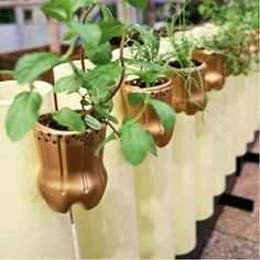30 Creative and Practical Plastic Bottle Planter ideas Plastic Bottle Planter, Reuse Plastic Bottles, Plastic Bottle Crafts, Recycled Bottles, House Plants Decor, Plant Decor, Garden Crafts, Garden Art, Indoor Garden