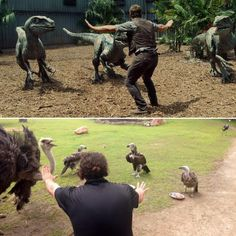 Zookeepers and animal lovers around the world have taken to posing like Chris Pratt in the movie Jurassic World , tagging the images with the hashtags #Prattkeeping and #ZoorassicWorld. The ...