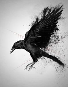 Nice Crow Tattoo Design by Death by Affection : Crow Tattoos Music Tattoos, Body Art Tattoos, Sleeve Tattoos, Ear Tattoos, Tatoos, Crow Art, Raven Art, Crow Tattoo Design, Tattoo Designs