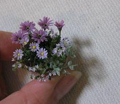 IMG_8968.jpg flowers of Rosy