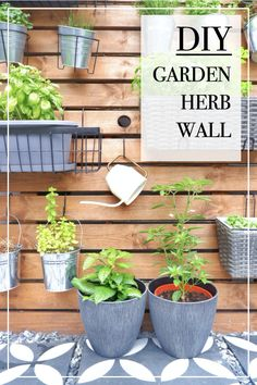 A simple way of adding green life to a dull corner in your garden. Here's my top tips on how to make a DIY garden herb wall. A great idea for people with small gardens who lack space. #gardendecor #gardendesign #herbwall #gardenwall #diyherbwall #livingwall #outdoorlivingspace #growyourownherbs #herbgarden #gardeninspiration #gardenideas #gardenstyling #makeyourownherbwall #gardendiy #diygarden Plant Basket, Plant Pots, Cool Woodworking Projects, Cool Diy Projects, Garden Inspiration, Garden Ideas, Herb Wall, Garden Solutions, Diy Ideas