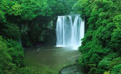 Cheonjiyeon Falls, Jeju-do, South Korea Korea Tourist Attractions, Isla Jeju, South Korea Travel, Jeju Island, Travel Wallpaper, Travel Photos, Travel Inspiration, Travel Destinations, Places To Visit