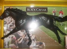BREYER TRADITIONAL # 715005 BLACK CAVIAR HORSE~2012 NIB~SPIRIT OF THE HORSE in Collectibles, Animals, Horses: Model Horses   eBay Caviar, Worlds Largest, Superstar, Spirit, Racing, Horses, Traditional, Model, Ebay