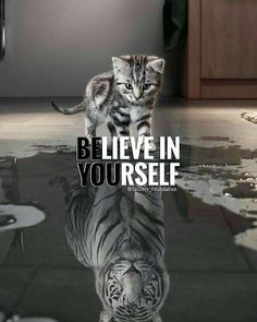 """5,474 Likes, 23 Comments - Positive Motivational Quotes (@thepositivediaries) on Instagram: """"Thank you for this reminder @successfoundation  - Always believe in yourself! What you think, You…"""""""