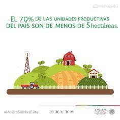 El 70 % de las unidades productivas del país son de menos de 5 hectáreas. SAGARPA SAGARPAMX #MéxicoSiembraÉxito