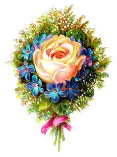 Antique Images: bouquet