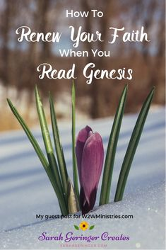 How you can renew your faith when you read Genesis this year. #genesis #biblestudy #oneyearbible