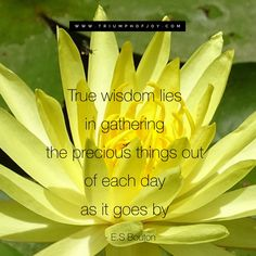 True wisdom lie in gathering the precious things out of each day as it goes by -E S Bouton