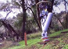 Robot bipède