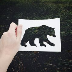 Artist Completes His Paper Cutouts Utilizing Nature Are you able to see nature by animals? You may with Nikolai Tolstyh's silhouettes. This artist cuts animal outlines out of a sheet of paper. Cut Animals, Paper Animals, Animal Outline, Flower Coloring Pages, Animal Silhouette, Artwork Display, Canvas Designs, Tattoo Blog, Fauna