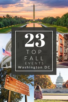 There are dozens of fun events planned in Washington D. this fall from family Halloween events to foodie festivals. National Mall, National Theatre, Travel With Kids, Family Travel, Travel Usa, Travel Tips, Travel Ideas, Canada Travel, Monument Rocks