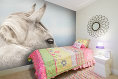 1000 images about horses and equestrian wall murals and