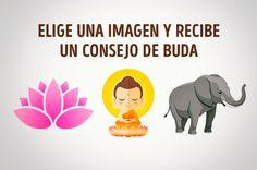 Elige una imagen y recibe un consejo de Buda