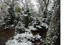 Občanské sdružení přátel pietního parku Draháň - Fotoalbum - Fotogalerie - ...zima přichází (2016) - 1 Snow, Park, Outdoor, Pictures, Photograph Album, Outdoors, Parks, Outdoor Games, The Great Outdoors
