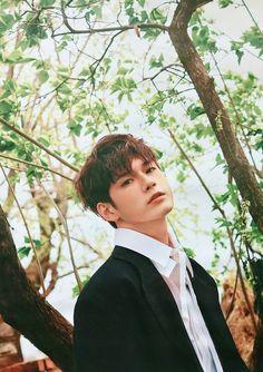 Wanna-One - Ong Seongwoo Cho Chang, Ong Seung Woo, Guan Lin, Produce 101 Season 2, Kim Jaehwan, Ha Sungwoon, Kpop, Seong, 3 In One