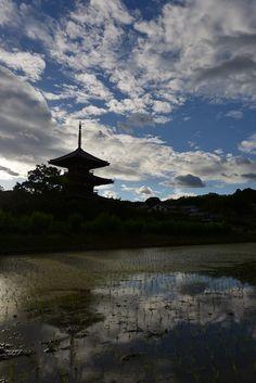 #yamato-ji #nara #japan あをによし奈良大和路