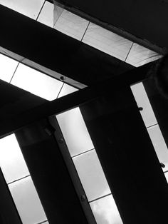 Autor: Ana Laura Estrada Medina Título: in the shadows