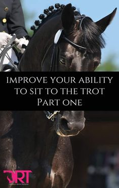In order to improve our sitting trot, first it is best to...