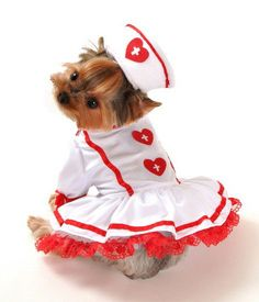 Red and White Nurse Dog Halloween Costume