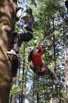 Camp Augusta- amazing Family Camping Experience