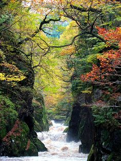 The Fairy Glen is a secluded and enchanting gorge on the river Conwy near to Betws-y-Coed in Wales