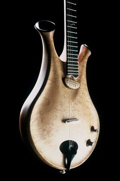 hollow body guitar made by Thierry Andre. Love how this looks kind of like a heart with arteries at the top.