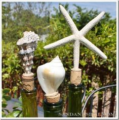 Shell Bottle Stoppers-  Make your own for nearly nothing! (Click pic to see how) #howtomakeyourownwine