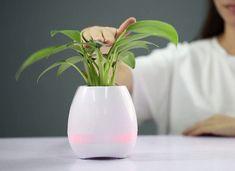 Un Ghiveci cu Muzica de Pian si Boxa Bluetooth poate fi un cadou de casa noua sau cadou pentru ea, o va ajuta sa isi modernizeze coltul de natura din casa si se va bucure in acelasi timp impreuna cu plantele de muzica preferata. Ghiveciul este si lampa, avand un cerc luminos care isi schimba culorile. Pe timp de seara el va transforma terasa sau balconul intr-un mic paradis ludic. Mai mult, un Ghiveci cu Muzica de Pian si Boxa Bluetooth poate fi un cadou haios pentru cei mici. Vase, Home Decor, Plant, Decoration Home, Room Decor, Jars, Vases, Interior Decorating, Jar