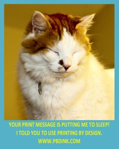 Catalog Printing, Magazines, Android, News, Business, Books, Prints, Animals, Design