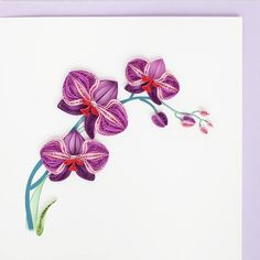 Orchidée  rose. Quilling.    Product Image