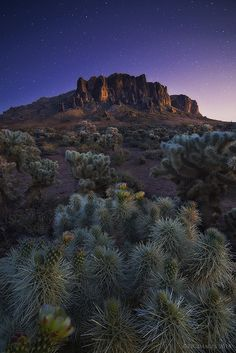 Lost Dutchman State Park, Arizona; photo by Peter Coskun on 500px