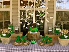 Boy's Woodland Wonderland Party