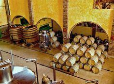 Brasil...  Produção de vinho na Villa Francioni em São Joaquim, Serra Catarinense.