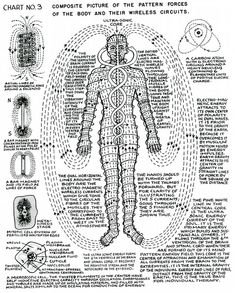 """lucifelle: """" Polarity Therapy Charts """"The Wireless Anatomy of Man"""" Its neat to see this in chart form as we bring these concepts to life during massage."""