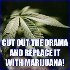 The leading cannabis humour Weed Jokes, Medical Marijuana, Weed Humor, Cannabis Wallpaper, Money Quotes, Smoking Weed, Stressed Out, Ganja, Sentences
